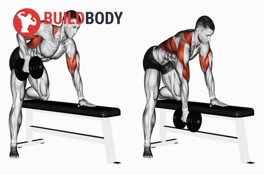 Тяга гантели: какие работают мышцы