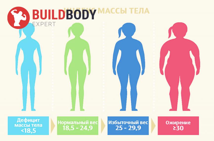 Как рассчитать идеальный вес: индекс массы тела